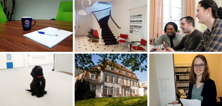 kaufmaennische ausbildung. Black Bedroom Furniture Sets. Home Design Ideas